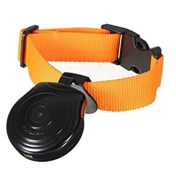 eyeCam VGA Cámara para mascotas, perfecto para gatos o perros, con collar. Cómodo Ajustar Gracias a la pantalla LCD, temporizador ajustable, Super ligero ...