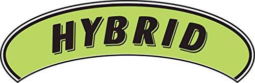 - Arch Windshield Slogan Sticker - Black/Neon Green -