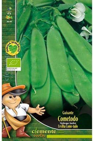 Semillas ecológicas de Guisante Tirabeque (Cometodo): Amazon.es ...
