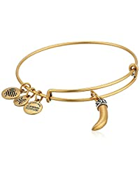 Alex and Ani Womens Horn Bangle