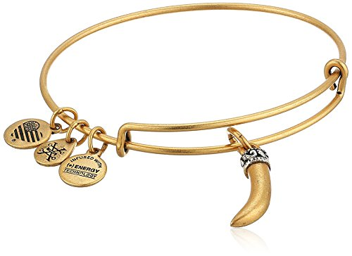 Alex and Ani Horn Bangle Bracelet, Rafealian Gold, Expandable