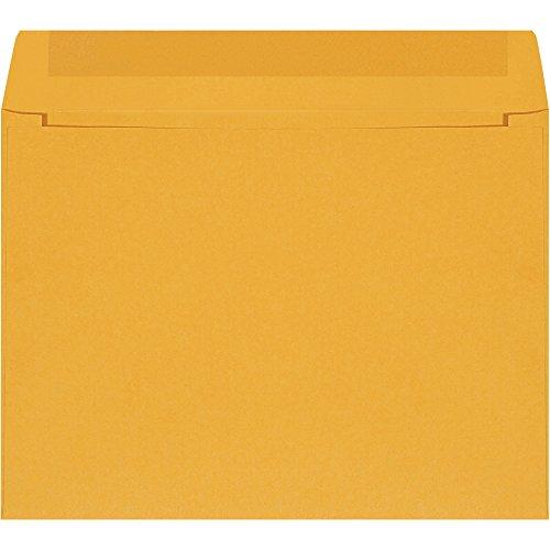 Top Pack Supply Gummed Envelopes, 12