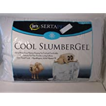 Sertapedic Cool Slumber Gel Pillow, Set of 2 (QUEEN 20 x 30)