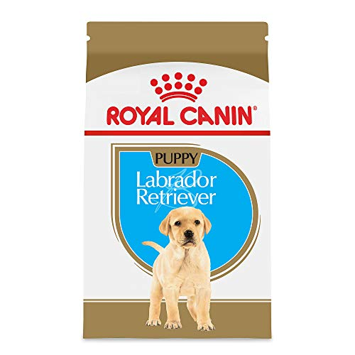 Royal Canin Puppy Labrador Retriever Dry Dog Food (30 lb)