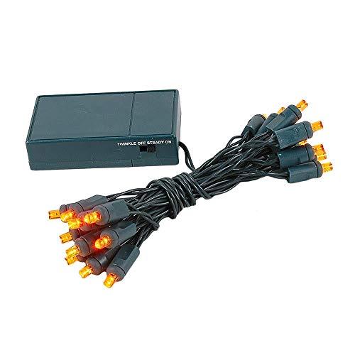 Novelty Lights, Inc. BAT20 LED Battery Operated Christmas Mini Light String Set, Green Wire, 20 Light, 8 Long