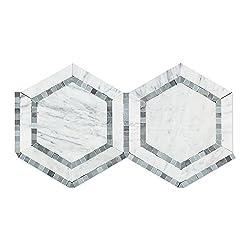 Carrara White Italian (Bianco Carrara) Marble 5 inch Hexagon Combination with Blue & Gray Border Mosaic Tile, Honed