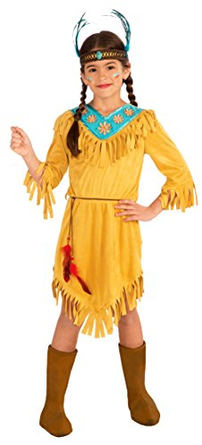 Pocahontas Costume Disney (Forum Novelties Little Flower Native American Child Costume, Large)