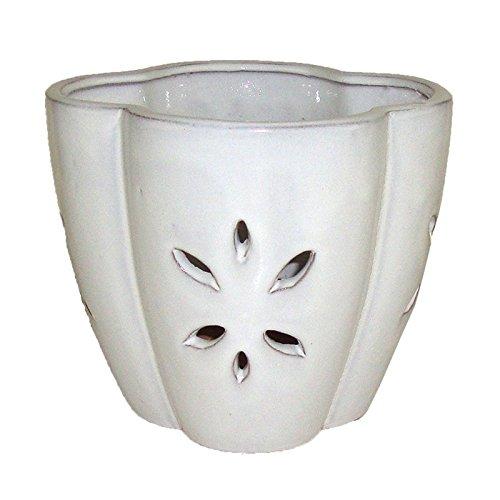 7'' White Star Ceramic Orchid Pot