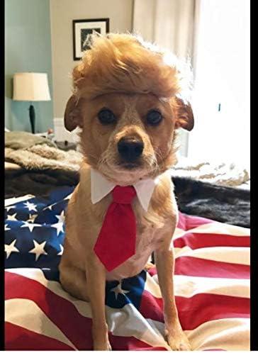 President Trump Pet Costume
