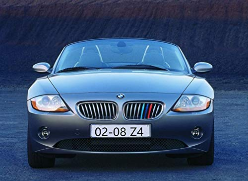 lanyun M Color Grille Insert Trims BMW Z4 Accessories for 2009-2016 BMW E89 Z4 with 9 Beam ONLY