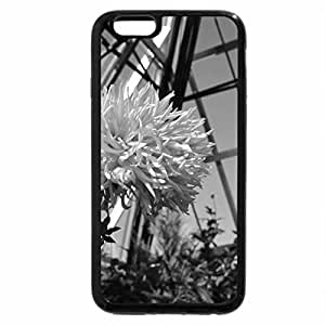 iPhone 6S Case, iPhone 6 Case (Black & White) - A perfect day at Edmonton garden 07