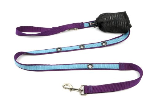 (Smoochy Poochy 2Tone Hands-Free Leash - Purple Turquoise)