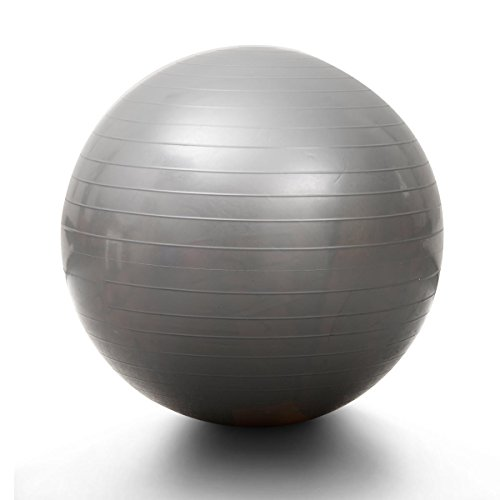 Silver 65 cm Fit Ball Swiss Yoga Exercise Washable
