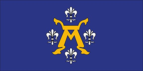 Finnish Coat Of Arms - magFlags Large Flag This File depicts The Coat of arms of a Finnish Municipality Kunta | Landscape Flag | 1.35m² | 14.5sqft | 80x160cm | 30x60inch - 100% Made in Germany - Long Lasting Out