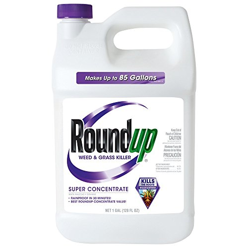 Roundup Weed and Grass Super Concentrate Killer (Case of ...
