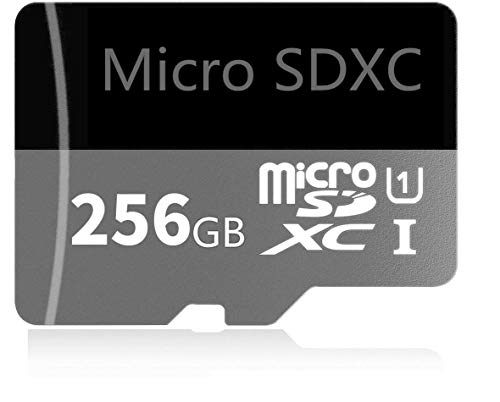 256GB Micro SD Card High Speed Class 10 SDXC Memory Card with Adapter (256GB)