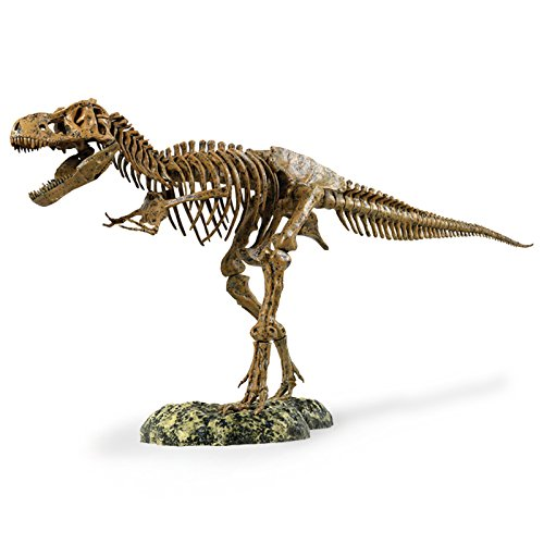 "Edu-Toys Science Tech T-Rex Skeleton 36"" Scale Replica Model"