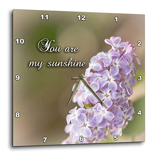 3dRose Alexis Design - Sayings Love Valentine - Lilac Flowers, Brown Background. You are My Sunshine Positive Saying - 10x10 Wall Clock (DPP_303099_1)