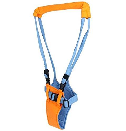 Babywalker de auxiliar de pie para beb/é protectora cintur/ón llevar arn/és asistente de aprendizaje Walk seguridad