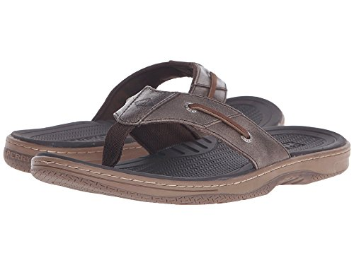 (SPERRY Men Sandals BAITFISH Thong (Box) / Brown Size 13)