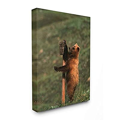 Stupell Industries Grizzly Bear Cub Scratching Park Sign Canvas Wall Art, 24 x 30, Multi-Color