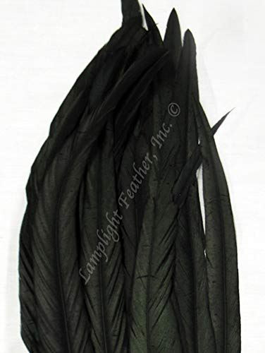 Coque Rooster Tail Feathers 14-16 inches per Half Ounce (Black)