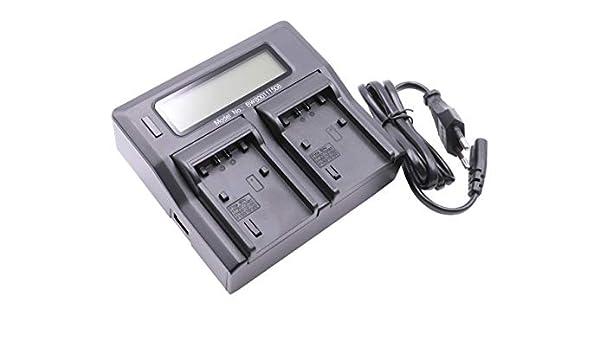Original VHBW ® dual cargador para Sony handycam fdr-ax100e fdr-ax53