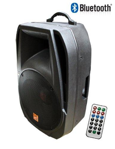 Mr. Dj PM-4015BT 15-Inch 3000 Watts Max Power Speaker
