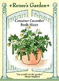 Cucumber, Container, Bush Slicer