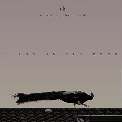 Birds on the Roof (Diy-herd)