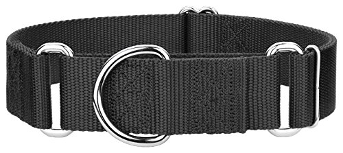 Country Brook Design 10 1 1/2 Inch Martingale Heavyduty Nylon Dog Collars (Medium, 1 1/2 Inch Wide, Black)
