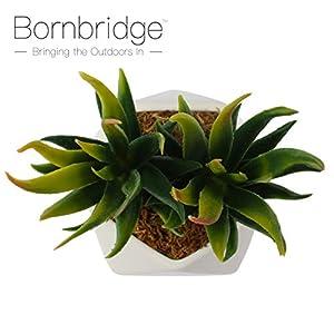 Bornbridge Artificial Succulent - Fake Succulent in Planter - Faux Succulent with Ceramic Geometric Planter - Aloe Succulent - Artificial Potted Plant (Single) 4