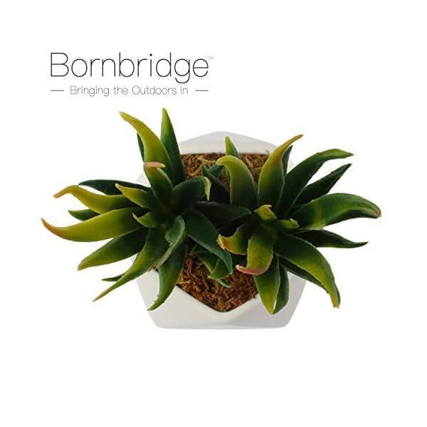 Bornbridge-Artificial-Succulent-Fake-Succulent-in-Planter-Faux-Succulent-with-Ceramic-Geometric-Planter-Aloe-Succulent-Artificial-Potted-Plant-Single