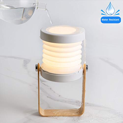 Camping Lantern, Emergency Light, Camping Light, Lanterns Battery Powered LED, Camping Lights and Lanterns Water Resistant for Power Outage, Hurricane    (The Best Ads Focus On One Big Idea)