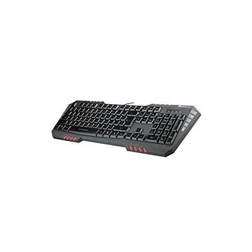 TECLADO GENESIS RX55 GAMING USB: Amazon.es: Industria ...