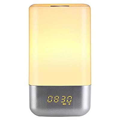 Wake Up Light, TINGAU Sunrise Simulation Alarm Clock Portable Dimmable Bedside Lamp With 5 Nature Sounds, USB Rechargeable, Touch Control Color Change RGB LED Night Light for Bedroom