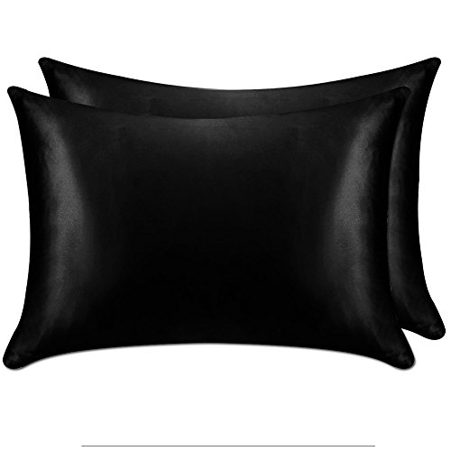 YANIBEST Pillow Cases 2 Pack 100% Mulberry Silk Pillowcase for Hair and Skin with Hidden Zipper (Standard Pillowcase Set of 2, Black)