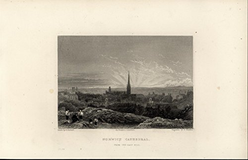 Norwich Cathedral From East Hill England 1860 antique engraved Cathedral print