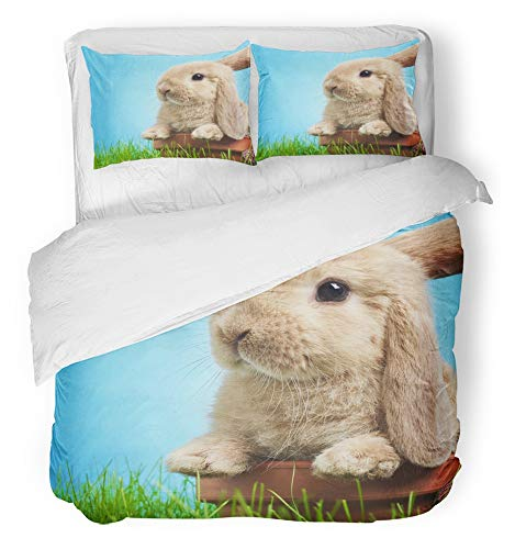 Emvency 3 Piece Duvet Cover Set Breathable Brushed Microfiber Fabric Gray Bunny Baby Rabbit in Grass Green Cute Wildlife Animal Spring Young Charm Bedding Set with 2 Pillow Covers Twin Size by Emvency