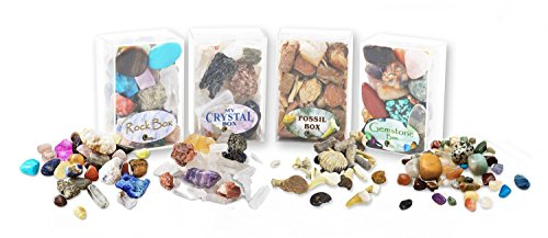 Rock, Crystal, Gem & Fossil Box Set. Set of 4 Boxed Collections