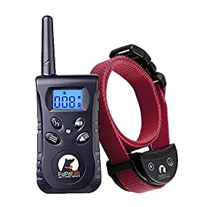 Paipaitek No Shock Dog Training Collar, No Prongs & Waterproof Humane Vibration Collar for Dogs, Rechargeable & Up to…