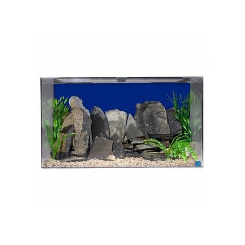 SeaClear 50 gal Acrylic Aquarium Combo Set, 36 by 15 by 20, Cobalt Blue