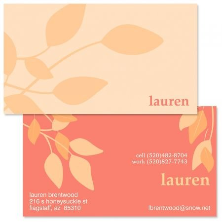 Amazon.com: Sweet Spot - Juego de 250 tarjetas de visita de ...