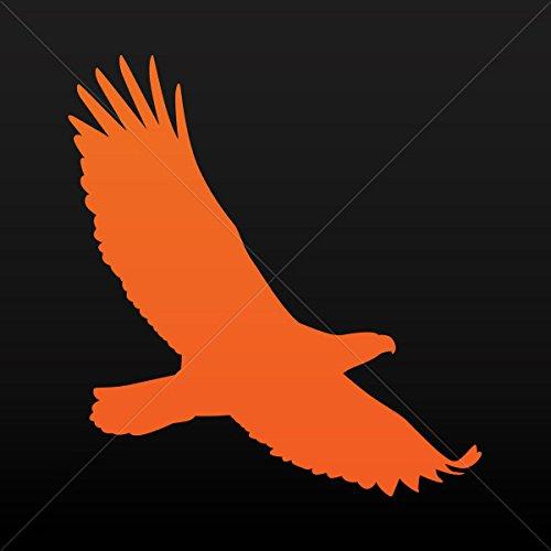 Wings West Racing - 6