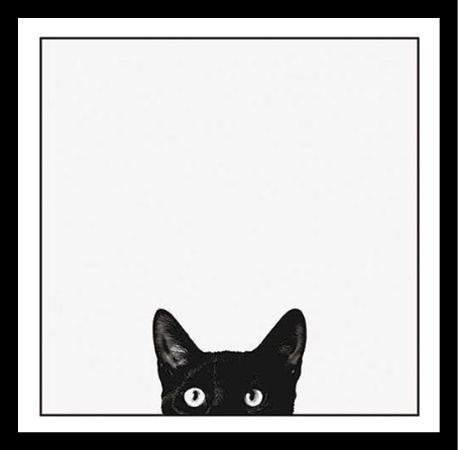 B1089 17x17 1.25 Black Plexi Framed Curiosity Black Cat by Jon Bertelli 17X17 Art Print Poster Wall Decor Black & White Photograph of Kitty Kitten Peeking (Buy Black White Photographs)