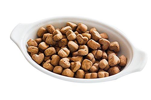 4Legz Organic Sweet Potatoes All Natural Crunchy Non-GMO Dog Treats, 7 Ounce