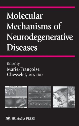 Molecular Mechanisms of Neurodegenerative Diseases (Contemporary Clinical Neuroscience)