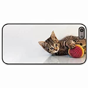 iPhone 5 5S Black Hardshell Case kitten toys playful background Desin Images Protector Back Cover