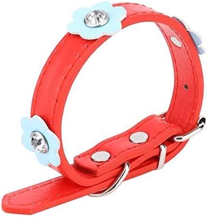 2 stuks kleine halsband beperk huisdieren en moeilijk te verliezen halsband voor honden
