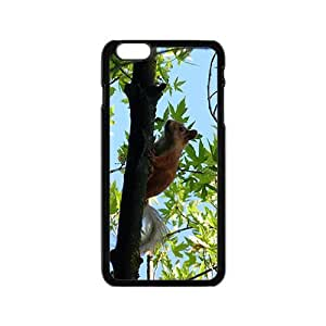 Squirrel Climbing a Tree Hight Quality Plastic Case for Iphone 6